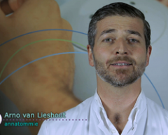 Medical Pitch – Arno van Lieshout